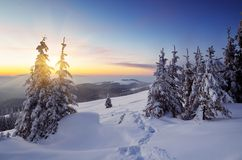 Sunset in winter Stock Image