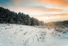 Sunset in winter mountains Stock Images