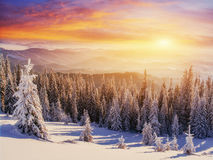 Sunset in the winter mountains Stock Photos
