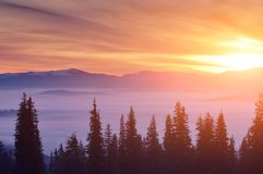 Sunset in the winter mountains. Sunset above the clouds in the mountains in winter Stock Image