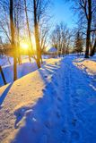 Sunset in winter park. Beautiful sunset in winter park Stock Image