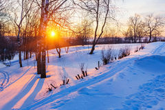 Sunset in winter park Royalty Free Stock Image