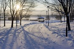 Sunset In Winter Park Royalty Free Stock Images