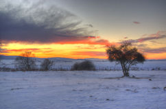 Sunset during winter stock image
