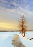 Sunset  in the winter. The sun in the agricultural field covered by snow. The photo shows two trees growing from a small river Stock Photos