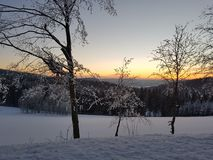 Sunset in Winterberg. German sunset in wintertime. Beautifull trees in snow Stock Images