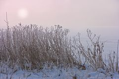 Sunset in wintry countryside Stock Image