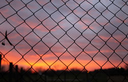 Sunset through the wire Royalty Free Stock Photos