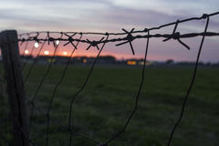Sunset wire Royalty Free Stock Photo