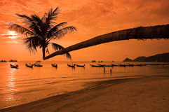 Sunset With Palm And Boats On Tropical Beach Stock Photography