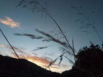 Sunset. Wonderful sunset medea from Algeria Royalty Free Stock Photography