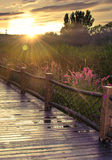 Sunset with wooden bridge Stock Images