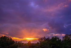 Sunset in the woods with bulky colorful clouds Royalty Free Stock Images