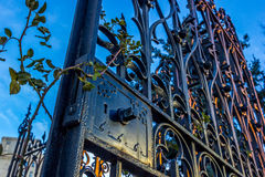 Sunset on Wrought Iron Gate. Wrought Iron Gate with Rose Vines and Thorns near Olympic Park in Calgary Alberta Canada Stock Photo
