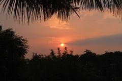 Sunset. Yellow sun Shadow sunlight sky yellowsky sunrises rises sun leef royalty free stock images