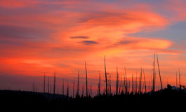 Sunset in Yellowstone Stock Photography