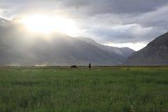 Sunset in Zanskar Valley. Beautiful lights from the sunset sky in Padum stock image