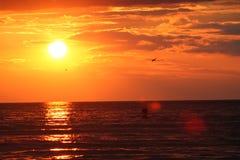 sunsetdream 0004587 Royaltyfri Bild