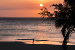 Sunsetl海滩和连续剪影 免版税库存图片
