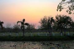 Sunsets σε Kasetsart πανεπιστημιακό Kamphaeng Saen στοκ εικόνες