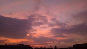 sunsets стоковые изображения