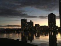sunsets imagens de stock