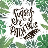Sunsets and palm trees. Hand drawn lettering on tropical background vector illustration