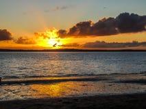 Sunsetting auf Strand, Punkt-Ritter, Auckland, Neuseeland Stockfoto