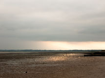 Sunsetting in the distance stunning light over mudflats casting. Glow pretty beach; England; UK Stock Photography
