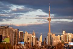 Sunsetting op de Stedelijke Wildernis van Toronto Stock Foto's