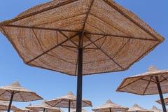 Sunshade ομπρέλες παραλιών Στοκ εικόνα με δικαίωμα ελεύθερης χρήσης