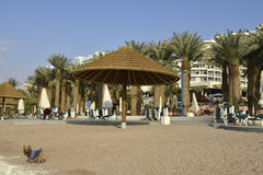 Sunshade and palms on the central beach of Eilat Royalty Free Stock Photo