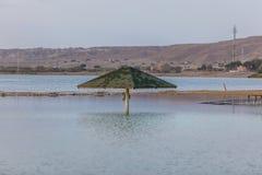 Sunshade w wodzie przy plażą Obraz Royalty Free