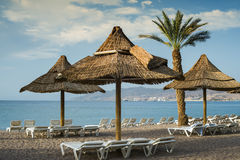Sunshades and beds on beach, Eilat Stock Image