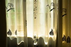 Sunshine. Afternoon sunshine on window curtain Stock Image