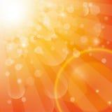 Sunshine Lizenzfreies Stockbild