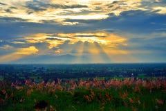 sunshine Imagens de Stock Royalty Free