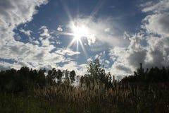sunshine fotografia stock