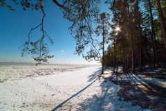 Sunshine in winter time. Stock Photo
