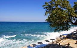Sunshine Beach with tree. At Pilio,Greece Stock Photos
