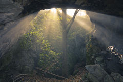 Sunshine into cave Stock Photo