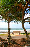 Sunshine Coast, Australia Stock Photos