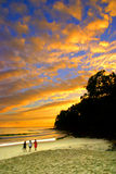 Sunshine Coast, Australia Royalty Free Stock Photos