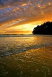 Sunshine Coast, Australia Royalty Free Stock Images
