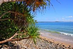 Sunshine Coast, Australia Stock Images