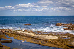 Sunshine Coast Queensland coastline Royalty Free Stock Photography