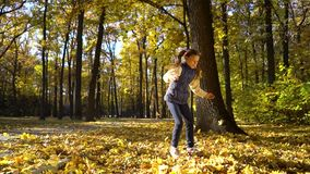 Sunshine on cute little girl throwing yellow leaves up in the air in autumn park stock video