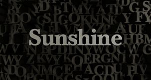 Sunshine - 3D rendered metallic typeset headline illustration. Can be used for an online banner ad or a print postcard Stock Photos
