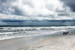 Sunshine Florida beach. In the summer time stock image