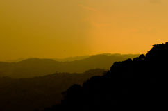 Sunshine in forest. Orange sky after sun is  sunrise in forest Royalty Free Stock Photography